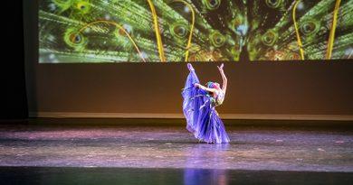 洛杉矶鸿韵舞蹈艺术学校第三届年度演出